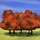 Orange Trees, 2003
