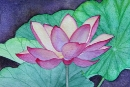 Lotus Flower #1, watercolor