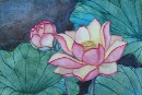 Lotus Flowers #3, watercolor