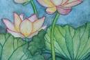 Lotus Flowers #5, watercolor